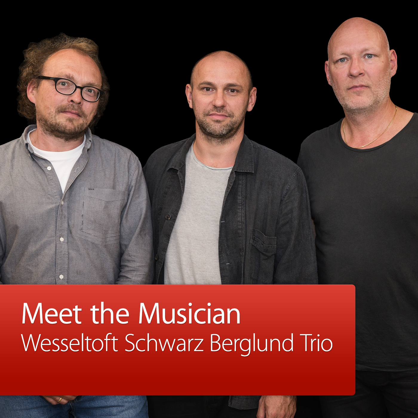 Wesseltoft Schwarz Berglund Trio: Meet the Musician