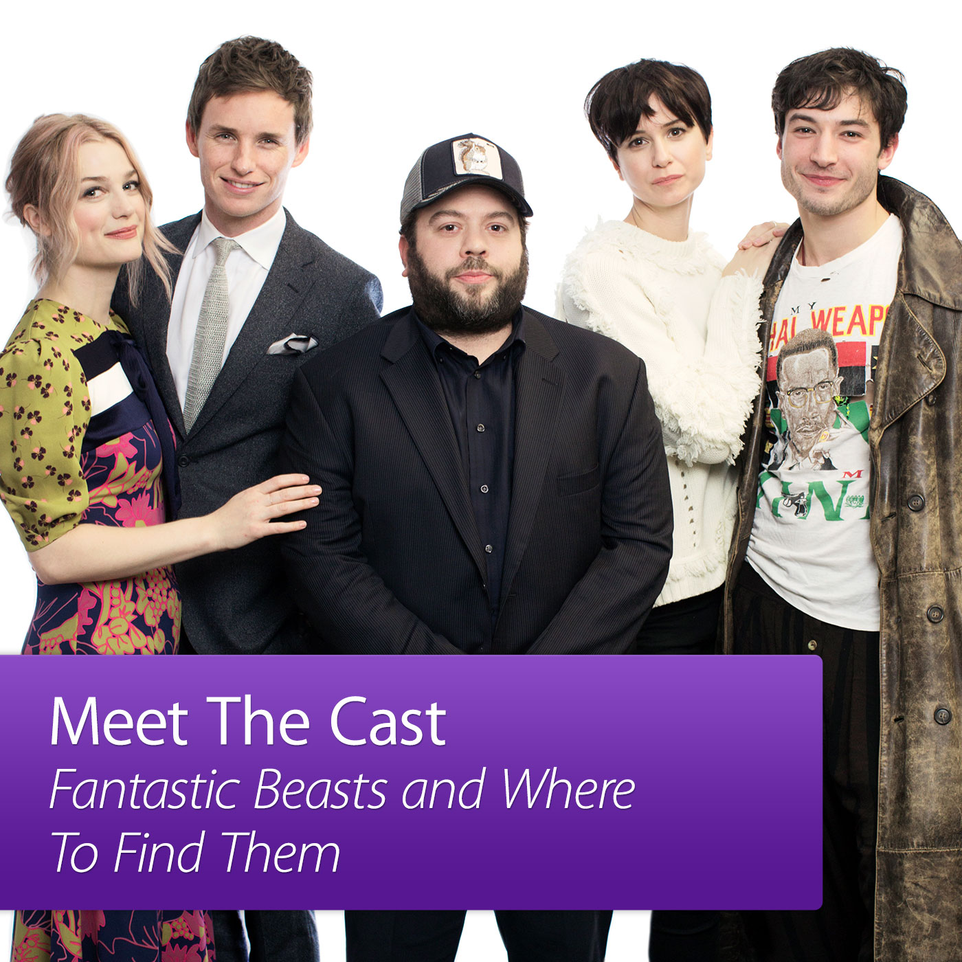 Fantastic Beasts and Where to Find Them: Meet the Cast
