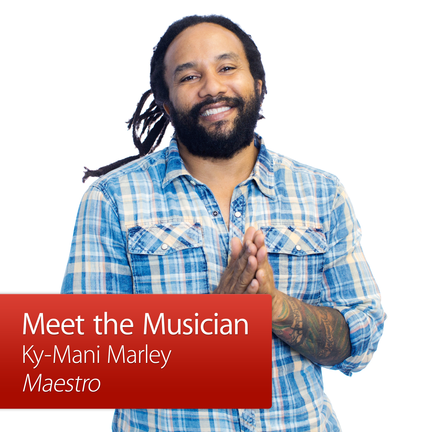 Ky-Mani Marley: Meet the Musician